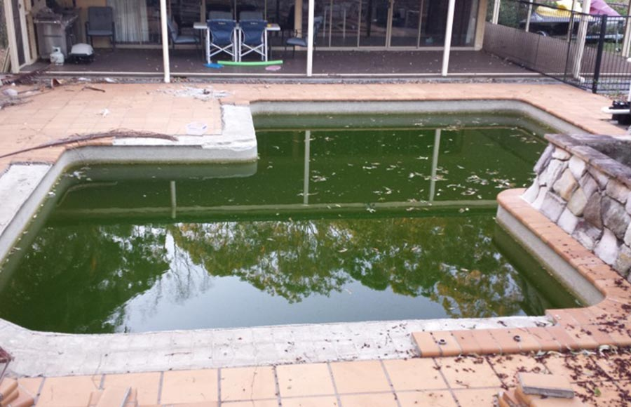 Photo of the swimming pool before, Pool refurbishment Daisy Hill