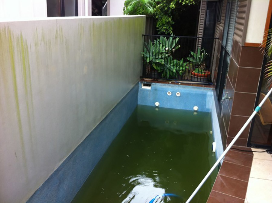 Photo of the pool before